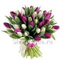 Фото №1: Букет сиреневых и белых тюльпанов