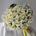 Фото №1: Букет кустовых ромашек