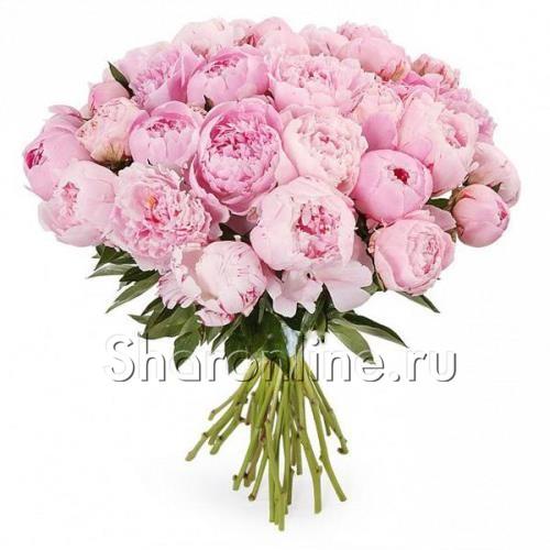 Фото №1: Букет нежно-розовых пионов