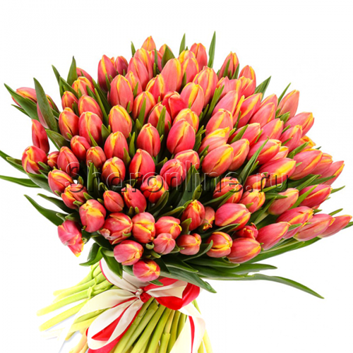 Фото №2: Букет огненных тюльпанов