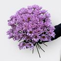 Фото №1: Букет розовых хризантем
