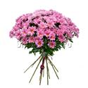 Фото №2: Букет розовых хризантем