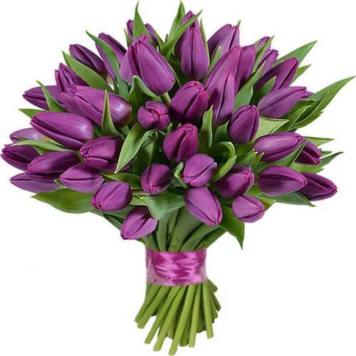 Фото №1: Букет сиреневых тюльпанов