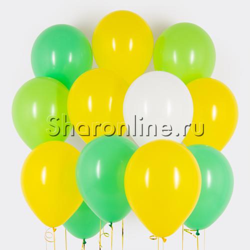 Фото №1: Облако шариков Бергамот