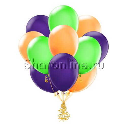 Фото №1: Облако шариков Карнавал