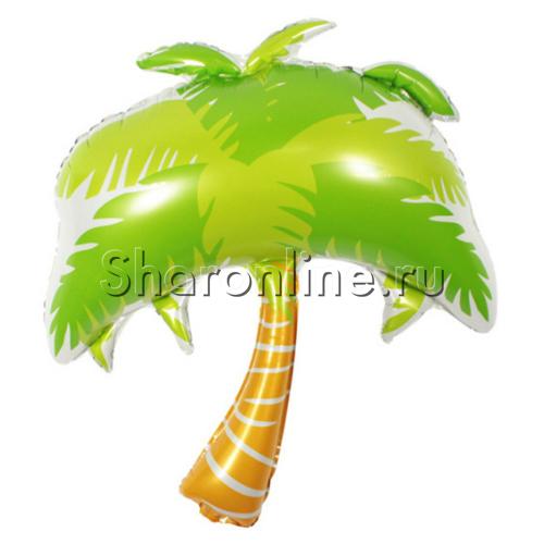 "Фото №1: Шар Фигура ""Пальма"" 86 см"
