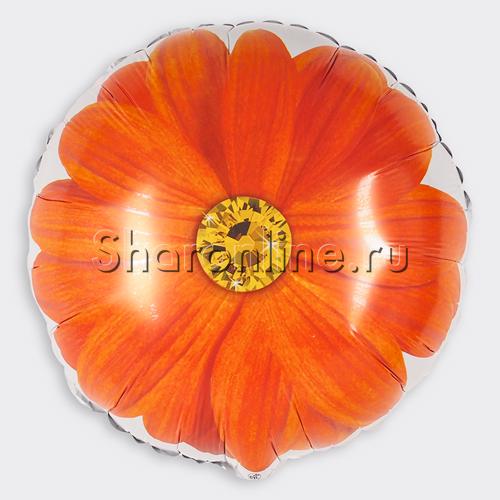 """Фото №1: Шар Круг """"Гербера"""" оранжевый 46 см"""
