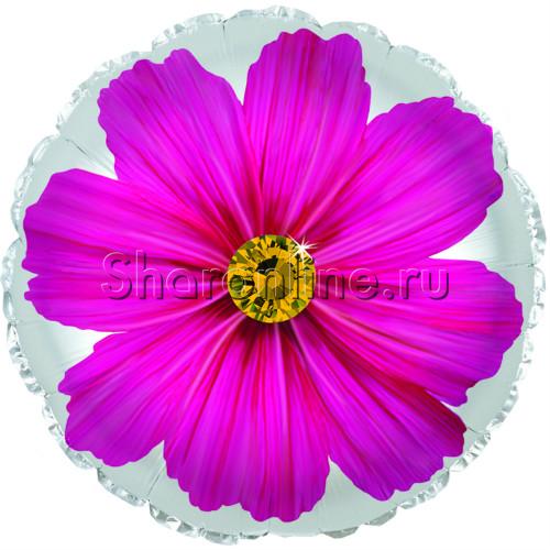 """Фото №1: Шар Круг """"Гербера"""" розовый 46 см"""